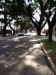 foto 3(3)